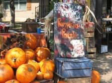 Haynie Flat Market 2008 004
