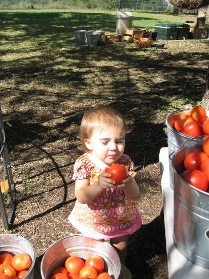 Haynie Flat Market 2008 081