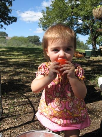 Haynie Flat Market 2008 082