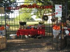 Haynie Flat Market 2008 094