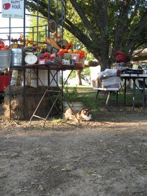 Haynie Flat Market 2008 119