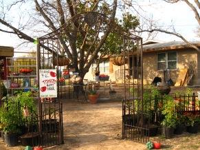 Market March 2009 (4)
